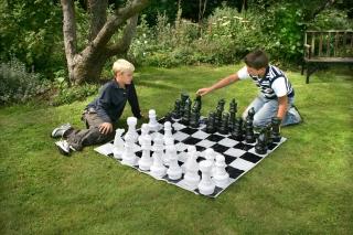 Standarta šahs